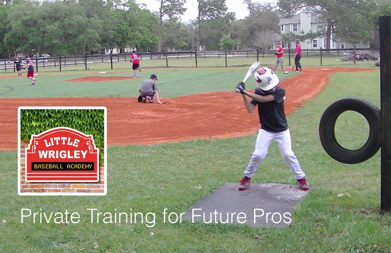 Little Wrigley Baseball Academy, Home